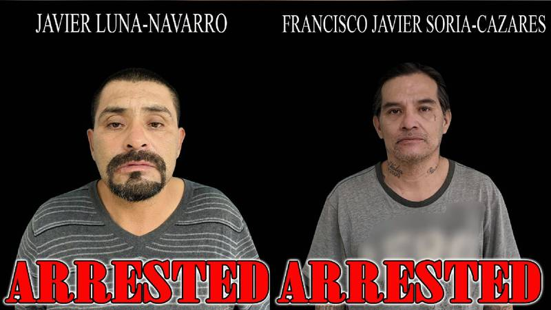 Sex offenders arrested