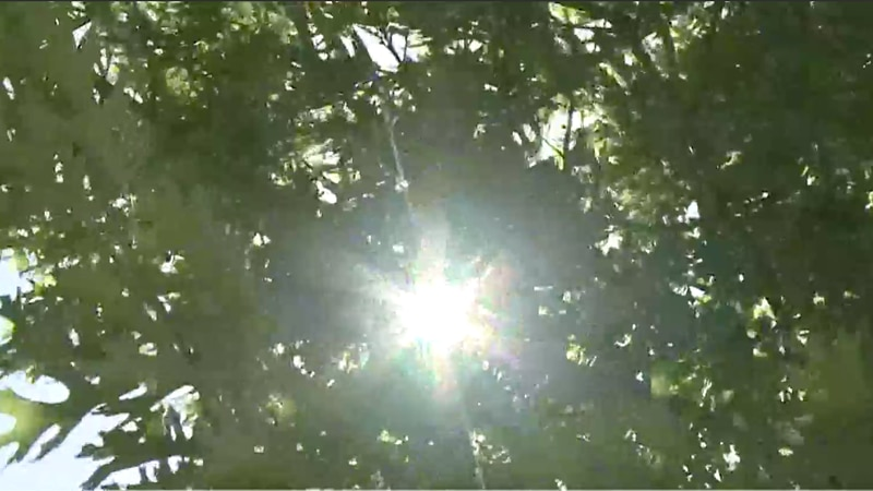 City plans for possibility of opening cooling shelters