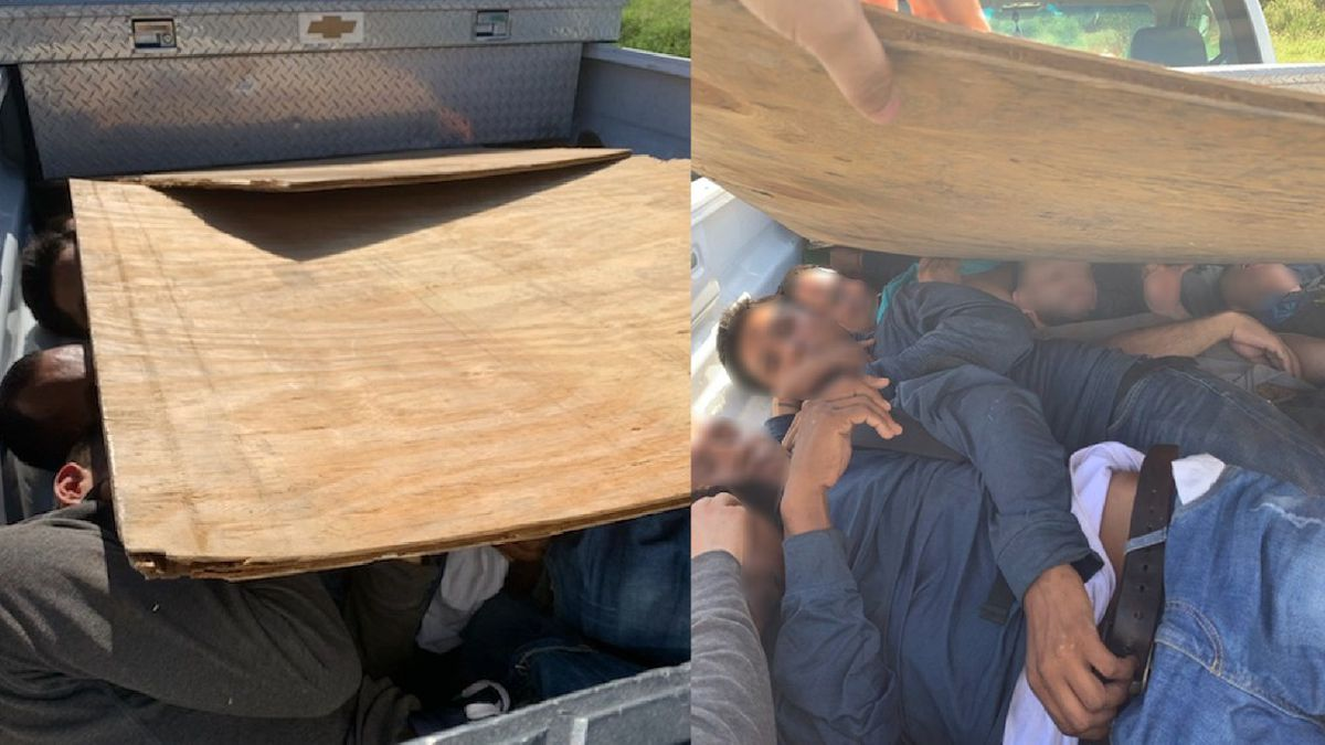 Agents find 8 undocumented immigrants under plywood