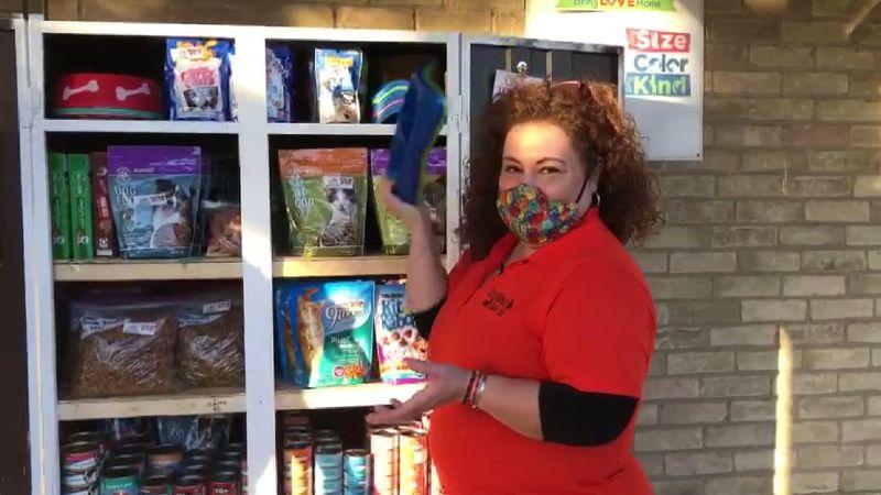Local volunteer Sandra Solis helps kickstart food pantry for pets