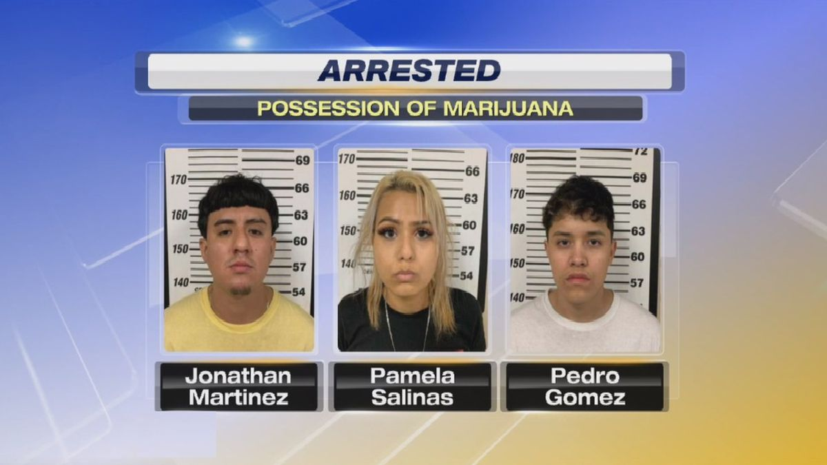 Three arrested during alleged drug bust